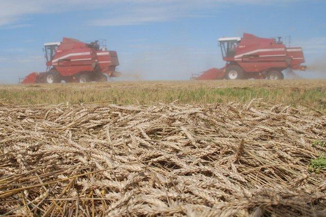 Минсельхоз: аграрным компаниям дефолт не угрожает