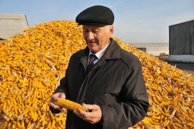 центнеров андрей николаевич биография химки