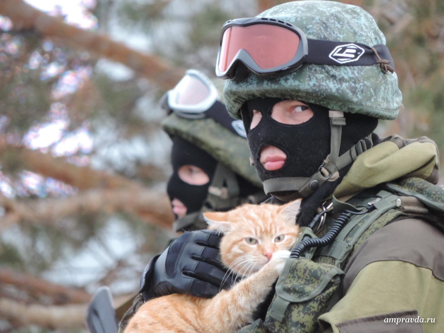 Фото вежливого человека с котом в крыму 5