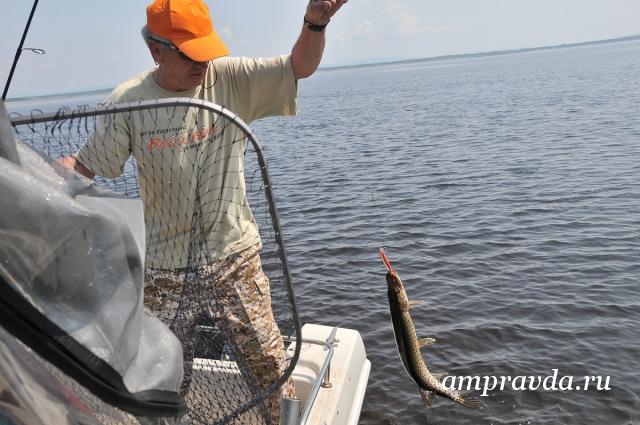 аренда и ловля рыбы