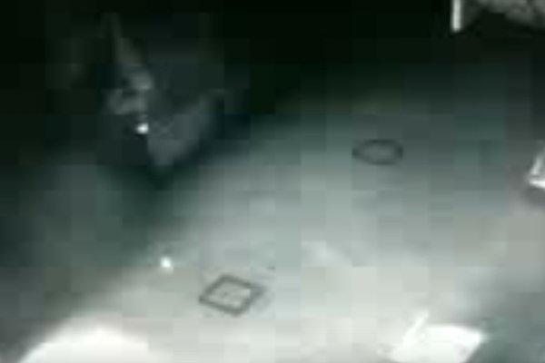 Охранник снял на камеру необычный объект в амурском музее