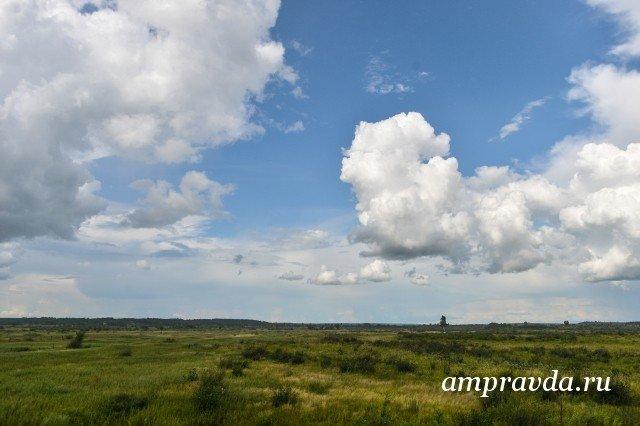 Занеделю вАмурской области выдали 5 «дальневосточных гектаров»