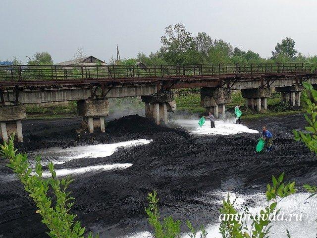 Граждане Амурской области ликвидируют последствия циклона
