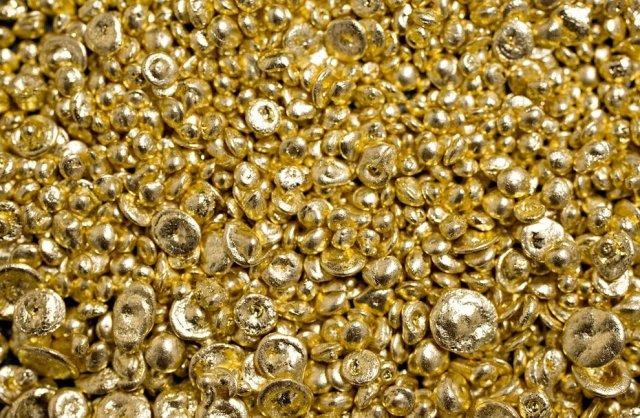 Ужителя Амурской области отыскали практически 4,5кг самородного золота