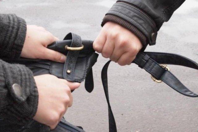 Бдительные граждане Белогорска помогли задержать подозреваемых вкраже