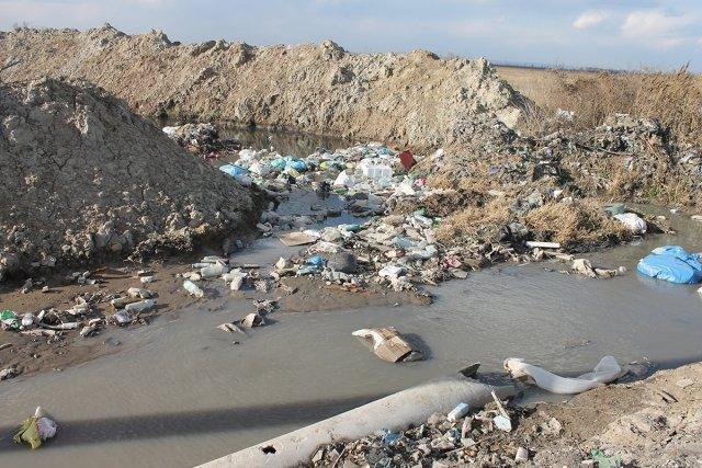 Экоорганизации Ставрополья присоединились кпроекту «Генеральная уборка»