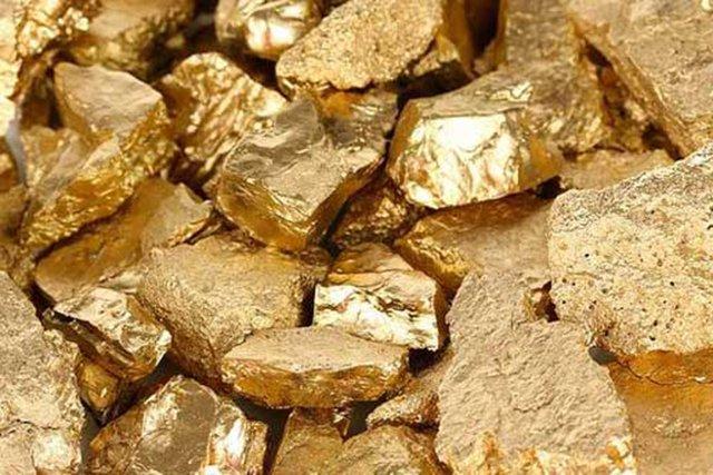 Амурчанка отыскала около дороги слитки золота на19 млн. руб.