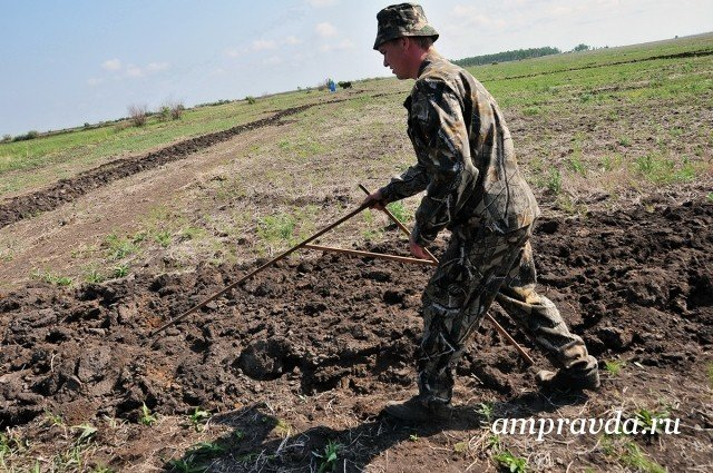 ВАмурской области выделили дополнительную тысячу бесплатных гектаров