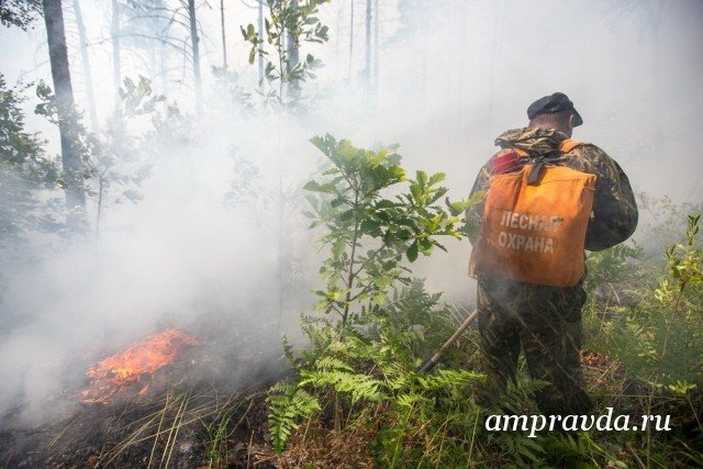 ВПриамурье отменили противопожарный режим в14 районах и7 городах