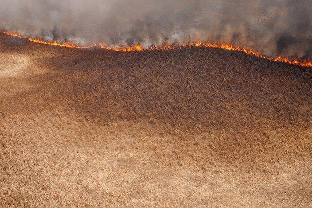 Влесах Амурской области введён режимЧС из-за пожаров
