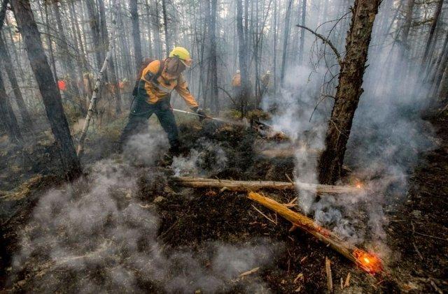 РежимЧС из-за лесных пожаров введен вАмурской области