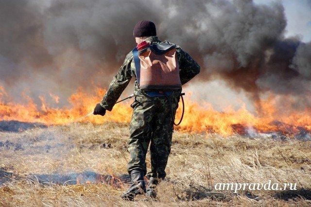 Площадь выгоревших природных территорий вРФ увеличилась на 100 000 га