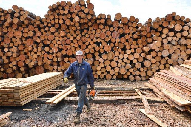 Торговля лесом биржа бинарный опцион тактика