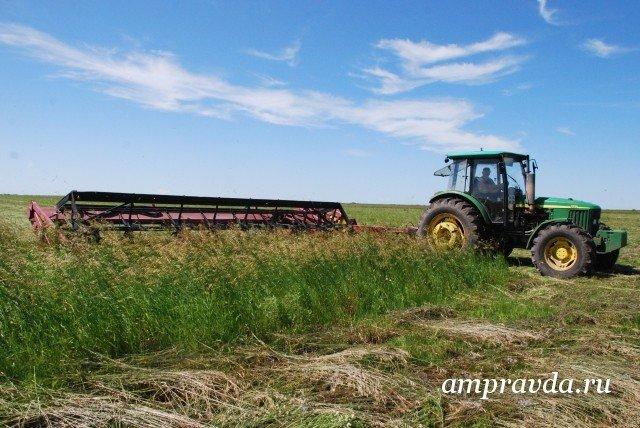 кредит для фермера в амурской области