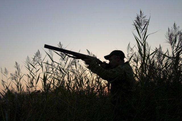 Житель поселка Сиваки случайно застрелил отца на охоте / В Магдагачинском районе житель поселка Сиваки случайно застрелил на охоте своего отца. Трагедия произошла вечером 3 сентября в лесу недалеко от населенного пункта. 35-летний мужчина выстрелил в родителя из охотничьего ружья.