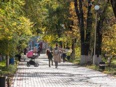 Что такое осень: атмосферный фоторепортаж из парков Благовещенска