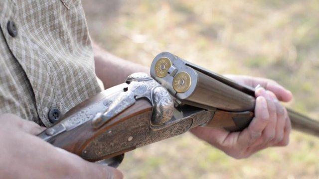 在Magdagachinsky地区,猎人开枪射杀了红鹿,而不是熊/在Magdagachinsky地区,获得狩猎许可的人射杀了死鹿。他们于10月3日星期六被发现非法开采。现在,违反者将不得不赔偿对自然的破坏,他们还将面临刑事起诉。