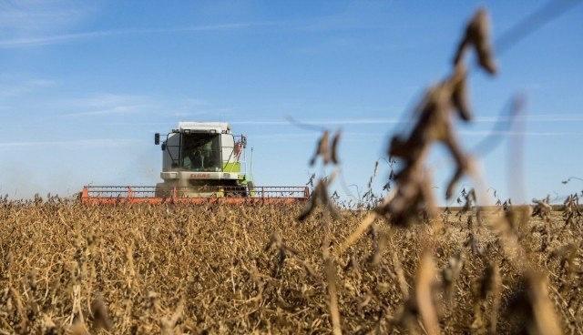 中国当局决定大幅增加黑龙江省的大豆产量/中国正在计算美国对大豆出口的制裁政策带来的潜在风险。近年来,美国占从国外向中国供应的大豆的40%至50%。