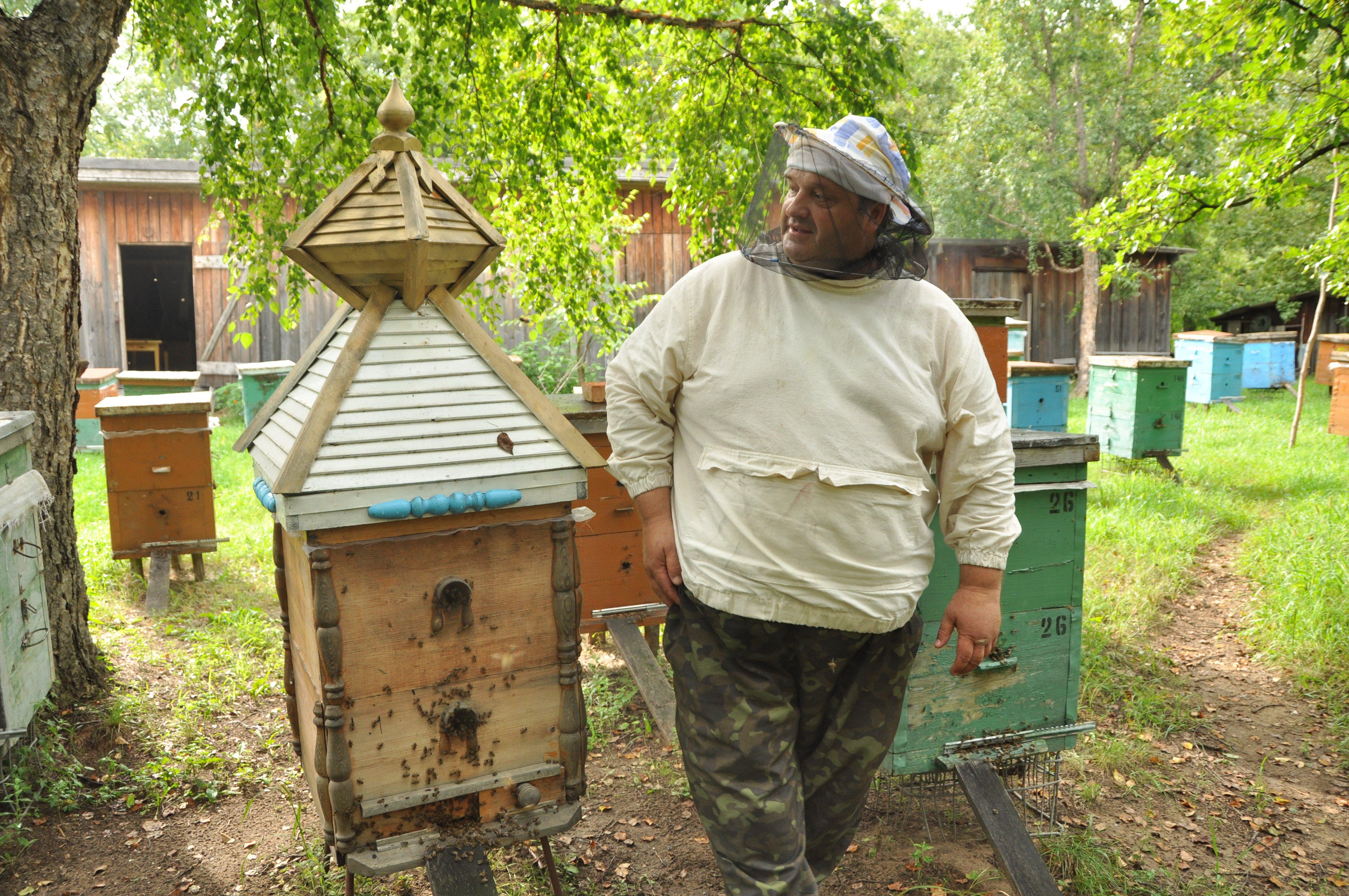 пчеловоды амурской области фото объясняется